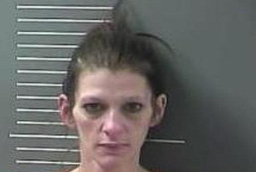 SHARON SHEPHERD - 2017-03-21 16:41:00, Johnson County, Kentucky - mugshot, arrest