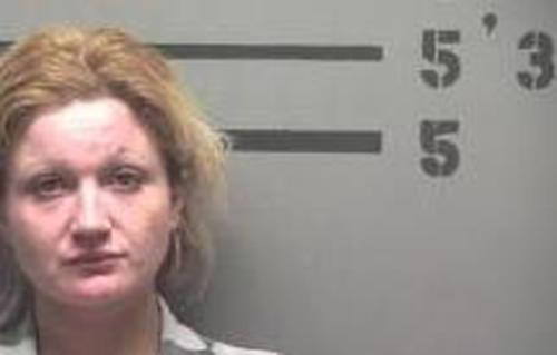BRITANY WARNER - 2017-04-04 17:45:00, Hopkins County, Kentucky - mugshot, arrest