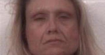 WENDY FAIR - 2017-04-27 23:11:00, Caldwell County, North Carolina - mugshot, arrest