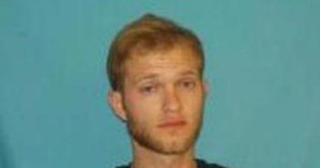 CURTIS TOMBLIN - 2017-06-13 01:30:00, Greene County, Tennessee - mugshot, arrest