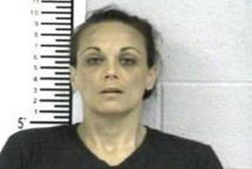 MEGHAN CLEMONS - 2017-06-15 12:59:00, Franklin, Tennessee - mugshot, arrest