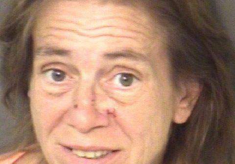 Shaver, Linda Jeanne - 2017-06-16 09:24:00, Union County, North Carolina - mugshot, arrest