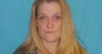 REBECCA JOHNSON - 2017-06-16 03:41:00, Greene County, Tennessee - mugshot, arrest