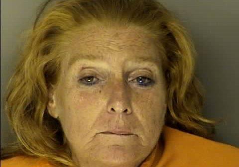 WILLIAMS, JERRI LYNN - 2017-06-16 23:40:00, Horry County, South Carolina - mugshot, arrest