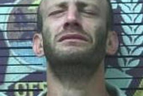 DAVID MCGILL - 2017-06-17 15:43:00, Polk County, Tennessee - mugshot, arrest