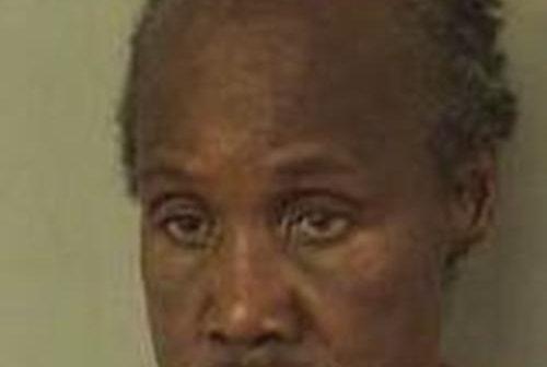 BRENDA HILL - 2017-06-17 12:32:00, Palm Beach County, Florida - mugshot, arrest