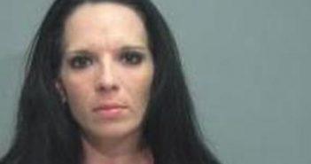 MICHELLE MUELLER - 2017-06-21 03:17:00, Wayne County, Ohio - mugshot, arrest