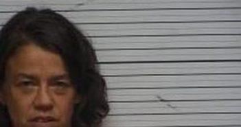 JAMIE BAKER - 2017-06-22 14:52:00, Wayne County, Kentucky - mugshot, arrest