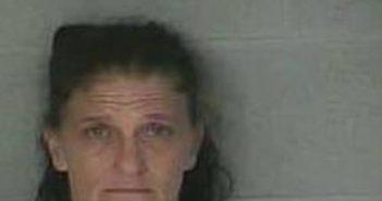 SHERRY BAIRD - 2017-06-22 20:55:00, Leslie County, Kentucky - mugshot, arrest