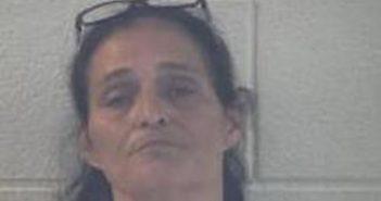 VANESSA MASON - 2017-06-22 20:18:00, Pulaski County, Kentucky - mugshot, arrest