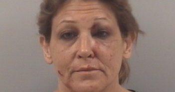 JEAN RITA PARRISH - 2017-06-23, Johnston County, North Carolina - mugshot, arrest