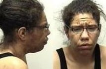 SHEENA RAISOR - 2017-06-25 16:17:00, Clark County, Indiana - mugshot, arrest