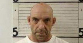 NATHANIEL BIRCHFIELD - 2017-06-28 12:09:00, Graham County, North Carolina - mugshot, arrest