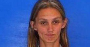TAMMY FARLEY - 2017-06-28 13:39:00, Catawba County, North Carolina - mugshot, arrest