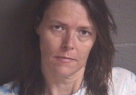 Mann, Elizabeth Mae - 2017-07-15 10:00:00, Buncombe County, North Carolina - mugshot, arrest