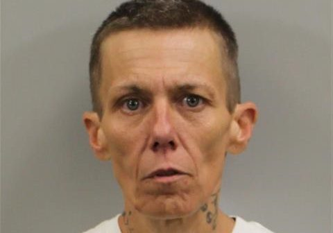 TAMMY DARLENE KEARNS - 2017-07-17 21:01:00, Randolph County, North Carolina - mugshot, arrest
