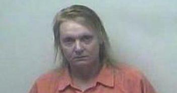 SANDRA TERRELL - 2017-07-20 21:29:00, Hart County, Kentucky - mugshot, arrest