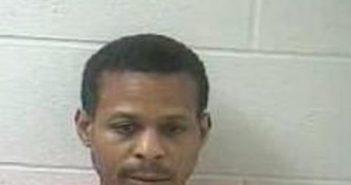 DARCY SULLIVAN - 2017-07-21 06:17:00, Daviess County, Kentucky - mugshot, arrest
