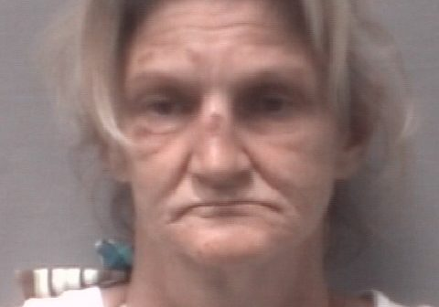 Porcelli, Kelly Denise arrest 2017-07-23, New Hanover County