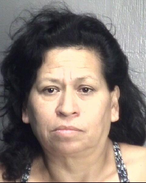 Guzman, Ma Teresa Vara arrest 2017-08-07, New Hanover County
