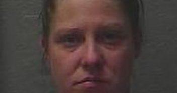 KIMBERLY SEGALINE - 2017-08-12 21:30:00, Benewah County, Idaho - mugshot, arrest