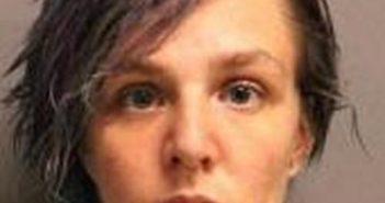 MICHELLE STILES - 2017-08-13, Columbia County, New York - mugshot, arrest