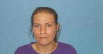 JANET BRYANT - 2017-08-14 15:42:00, Cabot PD, Arkansas - mugshot, arrest