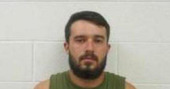 DEXTER RIPPY - 2017-08-14 18:34:00, Wayne County, Tennessee - mugshot, arrest