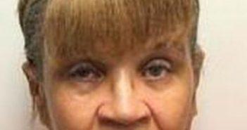 DIANA BLOOM - 2017-08-14 20:20:00, Chemung County, New York - mugshot, arrest