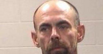 GEORGE CHAPMAN - 2017-08-15 15:46:00, Polk County, Texas - mugshot, arrest