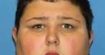 CHRISTINA GREENE - 2017-08-15 04:11:00, Wayne County, New York - mugshot, arrest