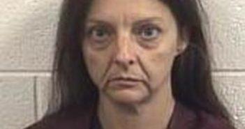 CHRISTIE GRAY - 2017-08-16 15:26:00, Rockingham County, North Carolina - mugshot, arrest