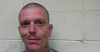 JESSE SHELTON - 2017-08-16 19:33:00, Polk County, North Carolina - mugshot, arrest