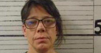 LISA WALTERS - 2017-08-18 04:01:00, Graham County, North Carolina - mugshot, arrest