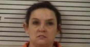 ASHLEE HENDERSON - 2017-08-19 00:19:00, Madison County, North Carolina - mugshot, arrest
