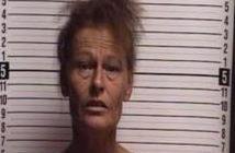 PATRICIA SHEPARD - 2017-08-19 00:13:00, Brunswick County, North Carolina - mugshot, arrest