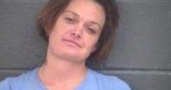 DANIELLE WATKINS-PRICE - 2017-08-20 03:44:00, Pender County, North Carolina - mugshot, arrest