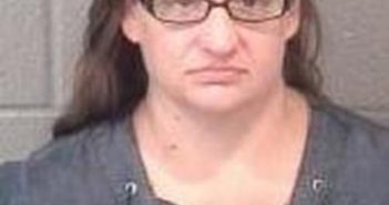 ERIKA BARRINGER - 2017-08-20 00:04:00, Stanly County, North Carolina - mugshot, arrest
