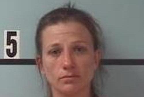 LINSEY COWLES - 2017-09-08 23:32:00, Burke County, North Carolina - mugshot, arrest