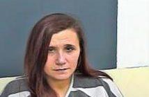 SUZANNE LEWIS - 2017-09-18 15:43:00, Sevier County, Tennessee - mugshot, arrest