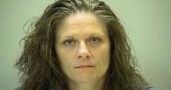 AMY JENKINS - 2017-09-20 21:52:00, Wilson County, Tennessee - mugshot, arrest