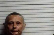 BRENDA BELLAMY - 2017-09-20 15:29:00, Brunswick County, North Carolina - mugshot, arrest