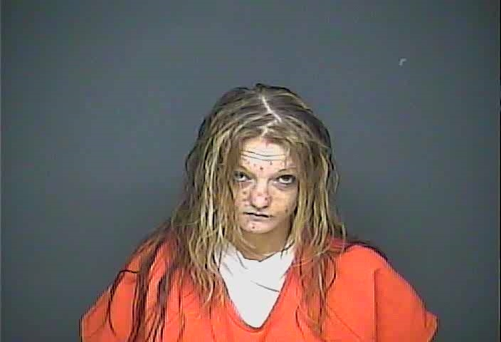 SALLIE LIZ MUSSER Mugshot, Adams County, Ohio - 2018-03-22