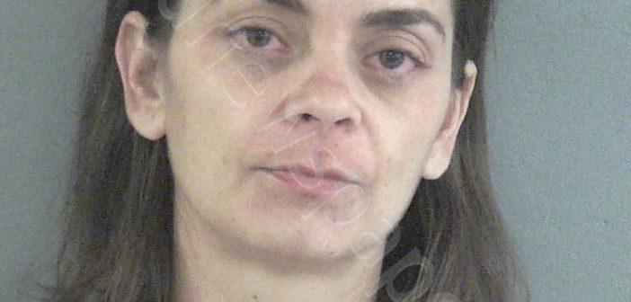 WATSON, NINA M arrest 2018-08-13 17:05:00, Sumter County, Florida