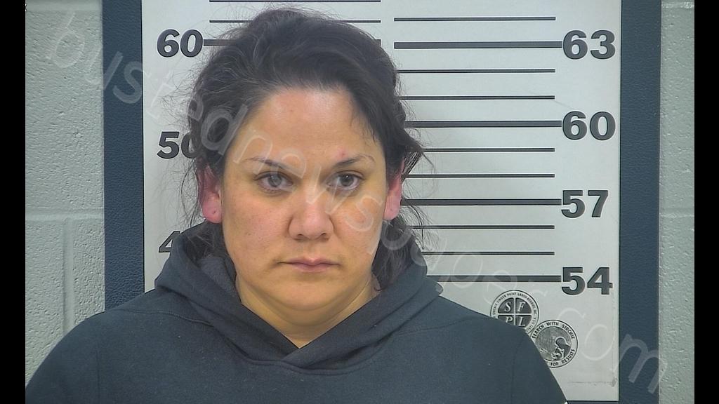 Gina Lynn Wilson Mugshot  224600