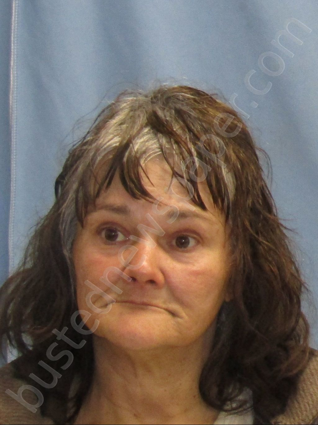 HENSLEY,CINDY LEIGH Mugshot, Pulaski County, Arkansas - 2019