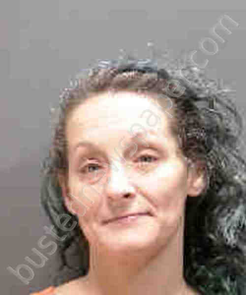Mercedes Of South Mississippi >> ALBERS, MARY MICHELLE Mugshot, Sarasota County, Florida ...