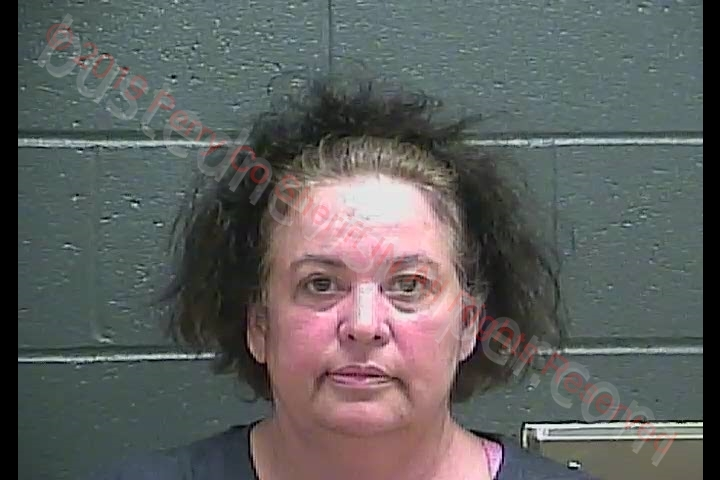 MARY SUSAN HILL Mugshot, Perry County, Indiana - 2019-08-10 15:00:00