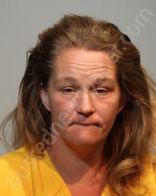 NICOLE HELMS Mugshot, Seminole County, Florida - 2019-09-06