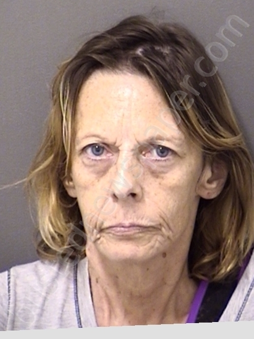 PARSONS,CONNIE MARIE Mugshot, Cooke County, Texas - 2019-09-08